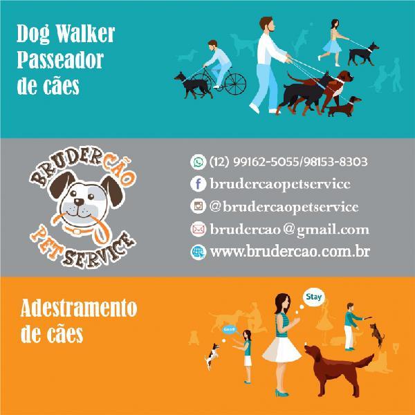 Dog walker para cães idosos jacareí