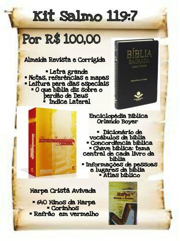 Biblias e dicionários