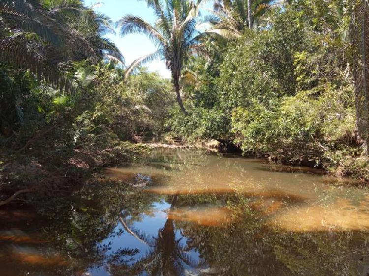 Chácara em região com riachos e área verde - monsenhor