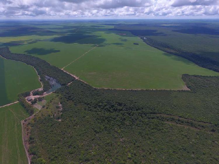 Fazenda - venda 4.526ha região diamantino mato grosso
