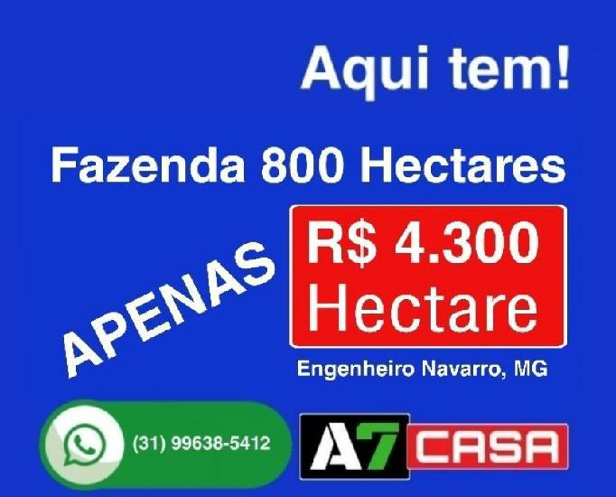 Vende fazenda 800 hectares (engenheiro navarro), mg