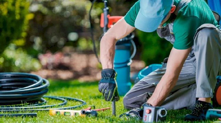 Jardineiro se oferece com experiência em manutenção,