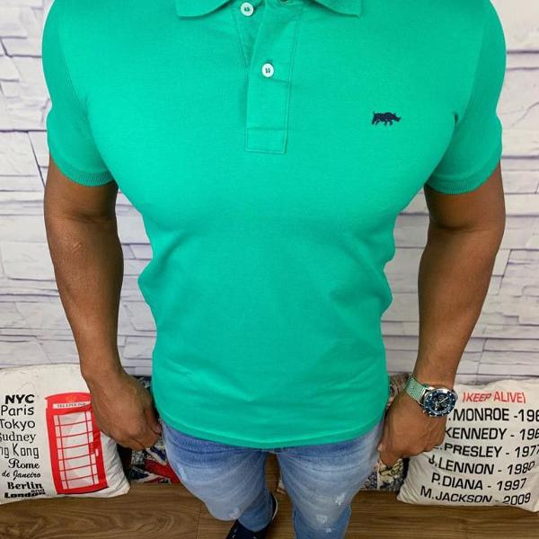 Dgraud polo masculina lisa verde água com logo