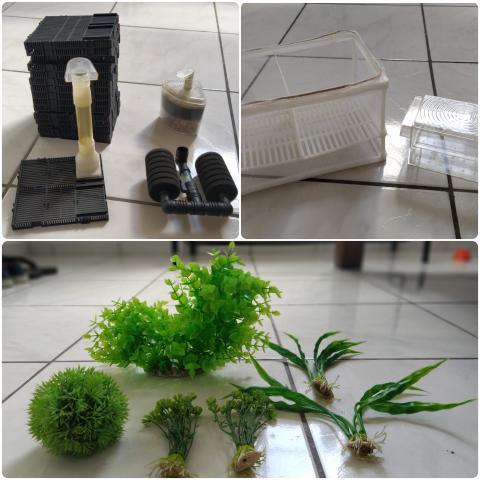 Acessórios para aquário - filtros - plantas - criadeira -