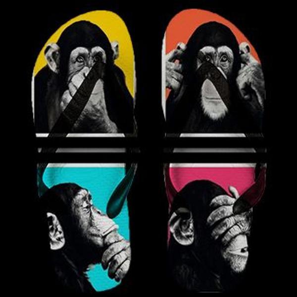 Chinelo de dedo 4 monkeys coleção animal