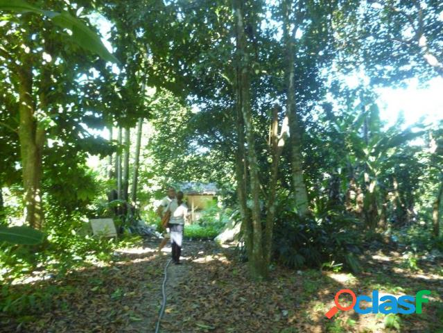 Terreno - venda - manaus - am - parque 10 de novembro