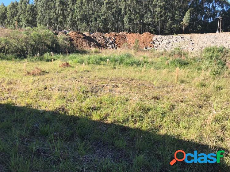 Terreno - venda - farroupilha - rs - monte verde