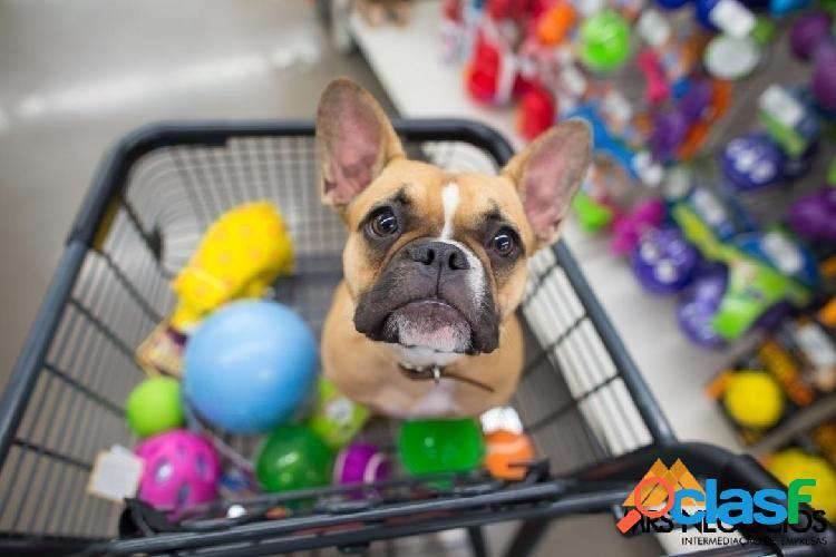 Mrs negócios - pet shop com banho/tosa à venda - centro de porto alegre/rs