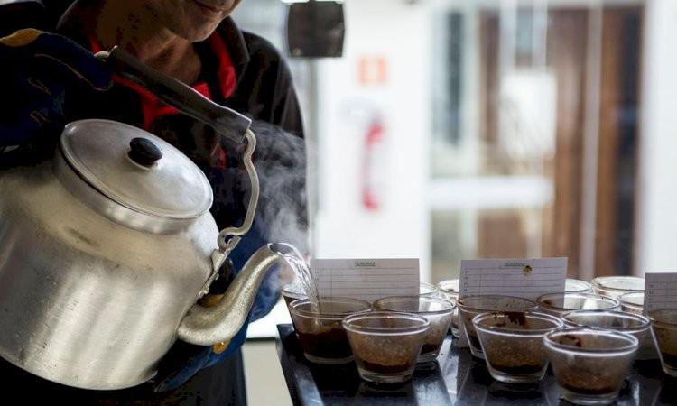 Atlantica Coffee - Exportação de Grãos de Café Verde