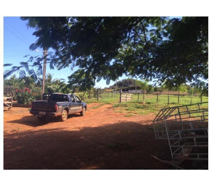 100 Alqs Planta 20 Vermelha Formada Montada Represa na Porta