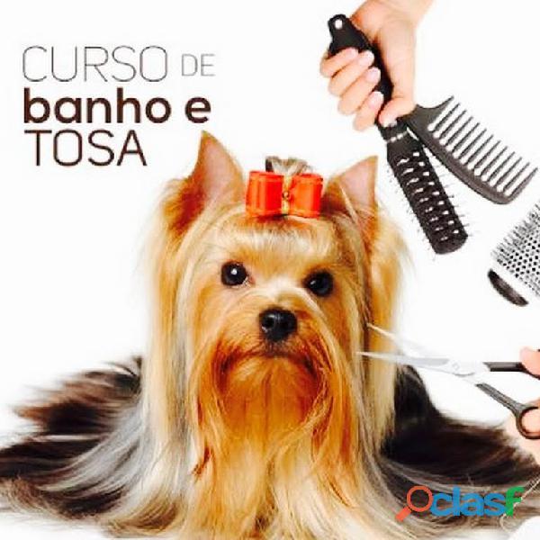 Curso completo de Banho e Tosa ONLINE