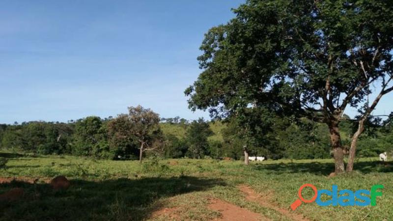 186 Alqs 50% Imóveis Cultura 116 Formados Santa Cruz De Goiás