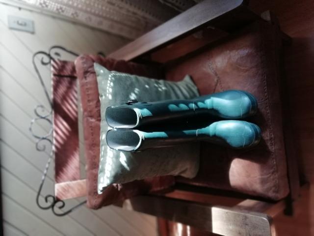 Botas de borracha