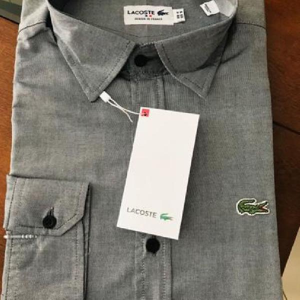 Camisa social masculina manga longa lacoste original