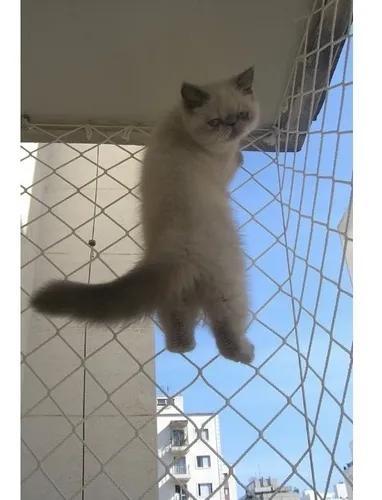 Rede tela proteção crianças, gatos para janelas 1,20m x