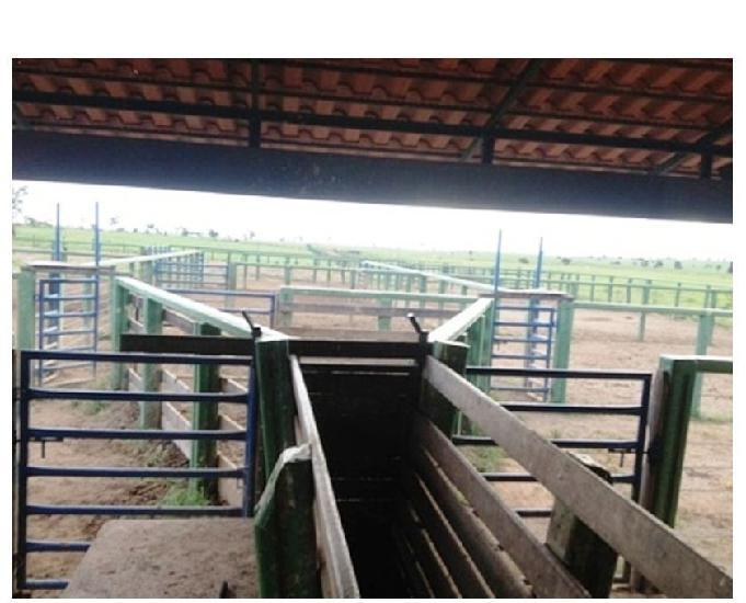 860 Alq. Pega 50% Imóveis Oferta Prazo C Entrada Guarani GO
