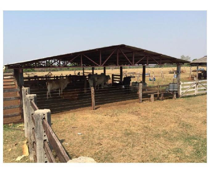 Fazenda 282 alqueires (1.364 hectares) aragarças-go