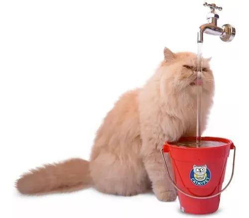 Bebedouro fonte gatos torneira magicat vermelho 110v 220v