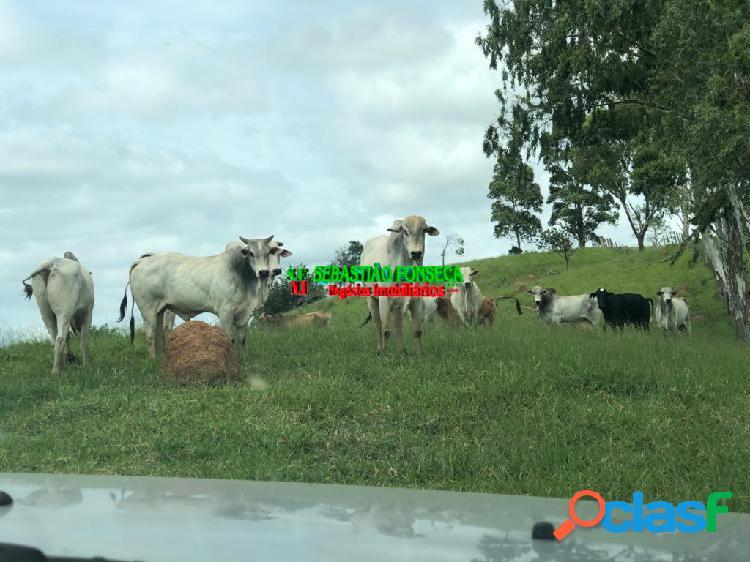 Bela fazenda com 107 alqueires em paraibuna