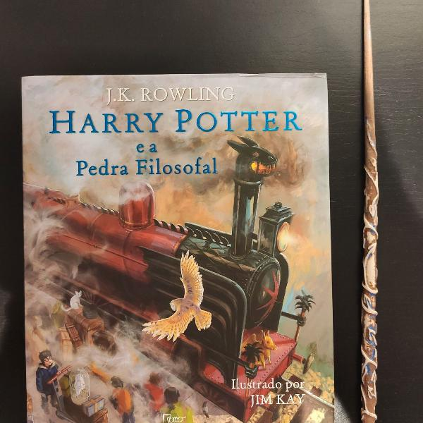 Download Harry Potter Livros Ilustrados