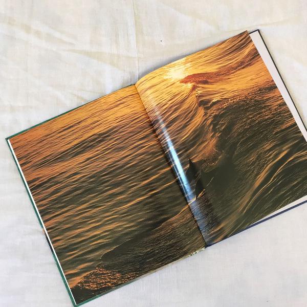 Livro animais do mar