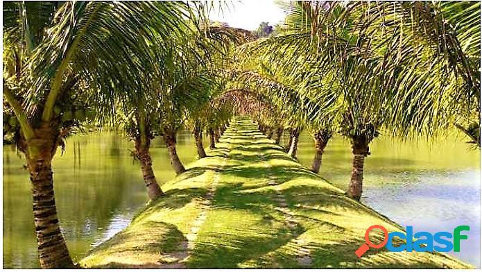Silva jardim - rj - excelente fazenda formada 208 hecteres