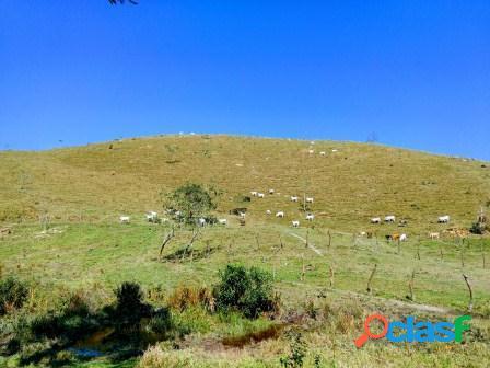 Rio bonito - rj - ipiabas - fazenda 85 hectares