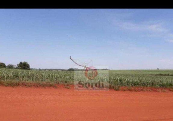 Fazenda em guaira sp