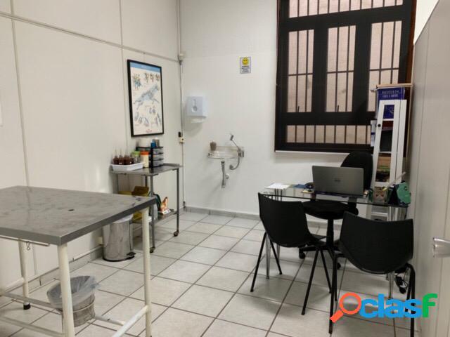 Clinica veterinária 24 hs em louveira