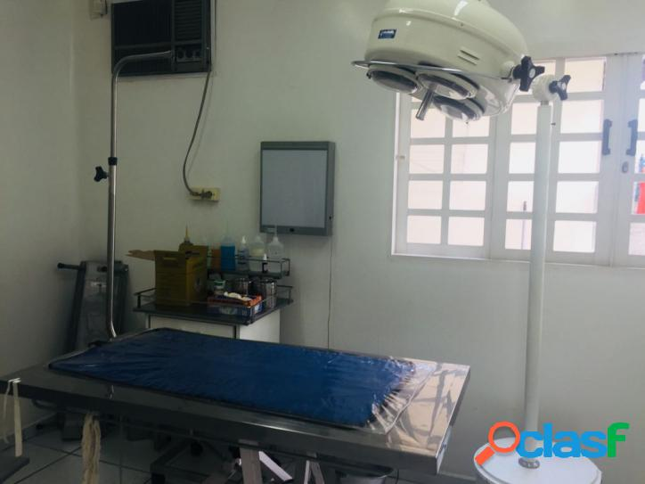 Clinica Veterinária- Santo André 3