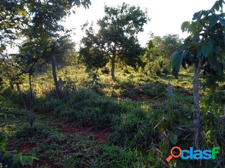 34 hectares de ótima qualidade de terra em curvelo - mg