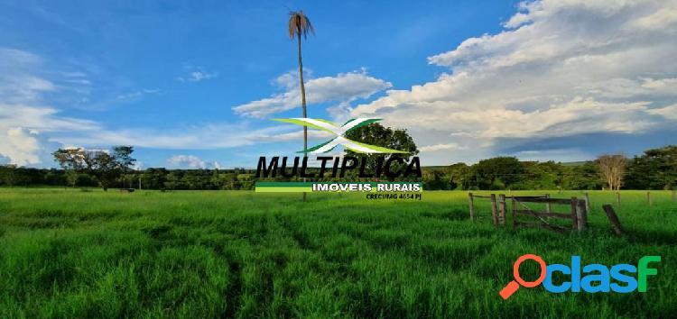 Fazenda em uberlândia mg - 82,03 hectares aceita parte permuta apto ou casa
