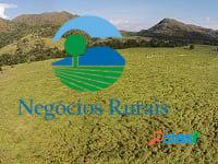 Fazenda uruaçu 104 alqueires