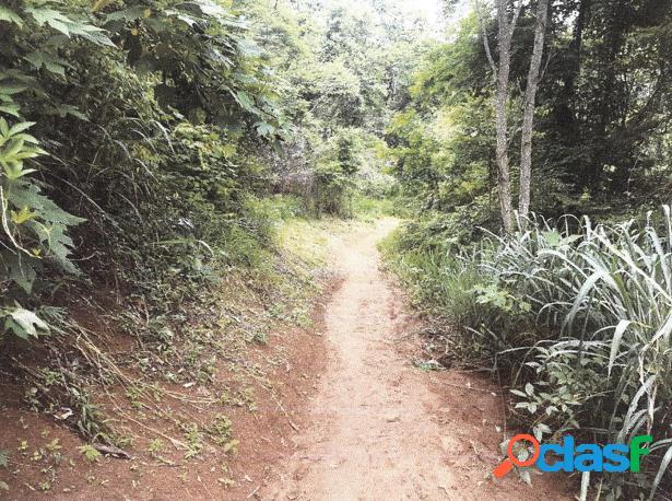 Lote - manhuaçu, mg - bairro são jorge - lote 24 quadra 08