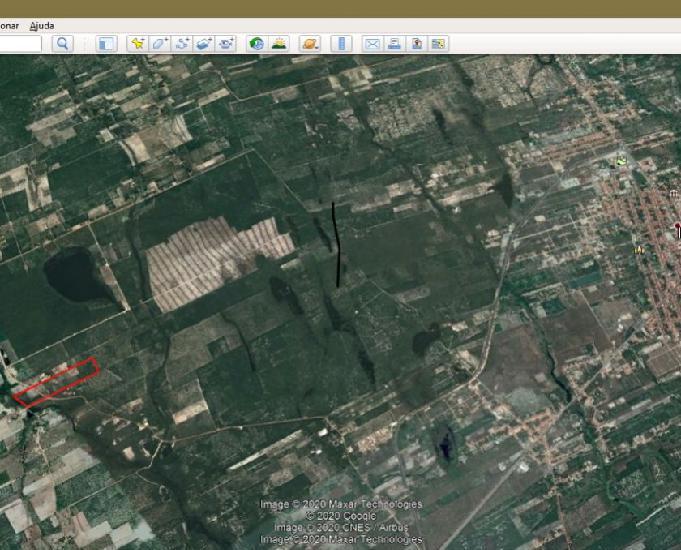 Vendo coqueiral em produção = 10,6 ha = 106.000 m2