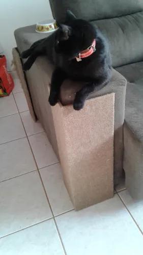Arranhador gatos protetor canto sofá e camabox 60x20 mdf