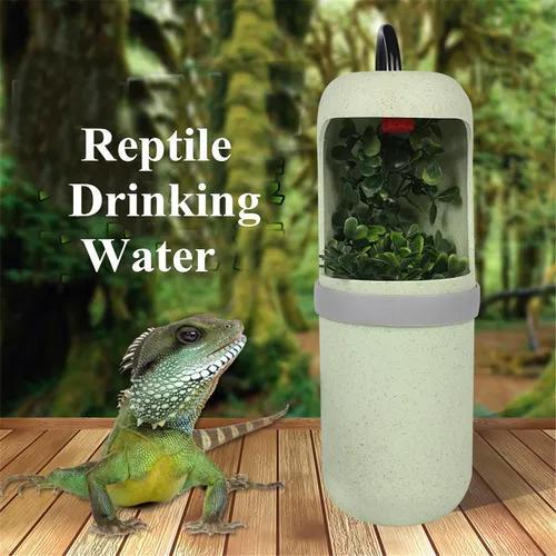 Novo automático água beber réptil lagarto chameleon
