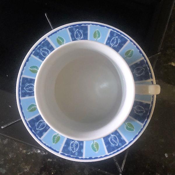 Xicara com pires em porcelana azul folhas