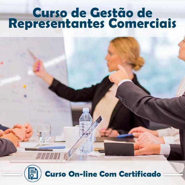 Curso online em videoaula de gestão de representantes