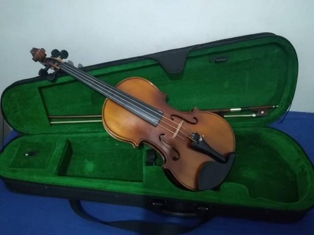 Violino eagle profissional (divido)