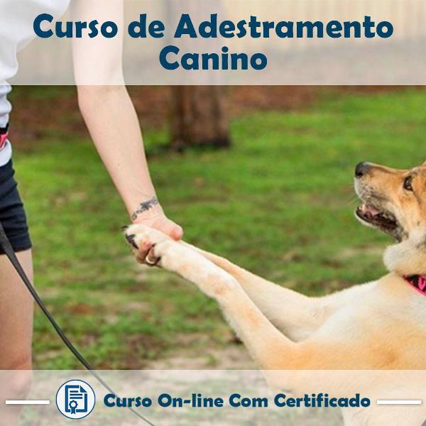 Curso online de adestramento canino com certificado