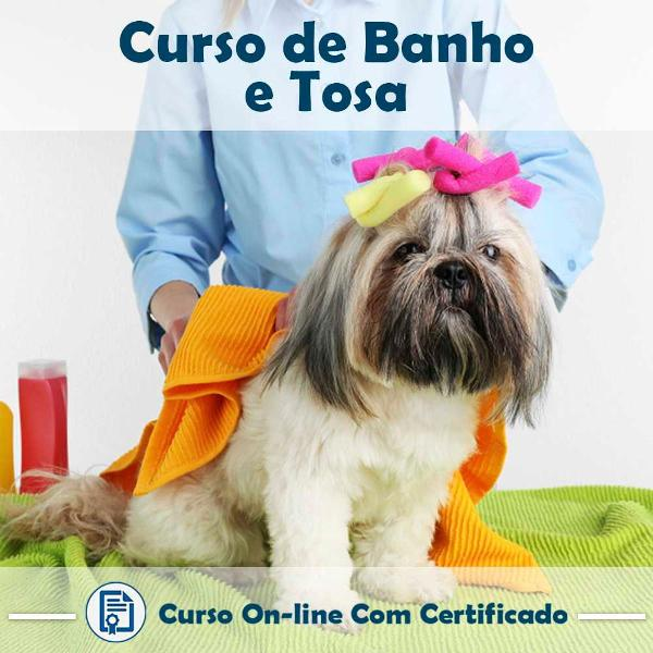 Curso online de banho e tosa com certificado