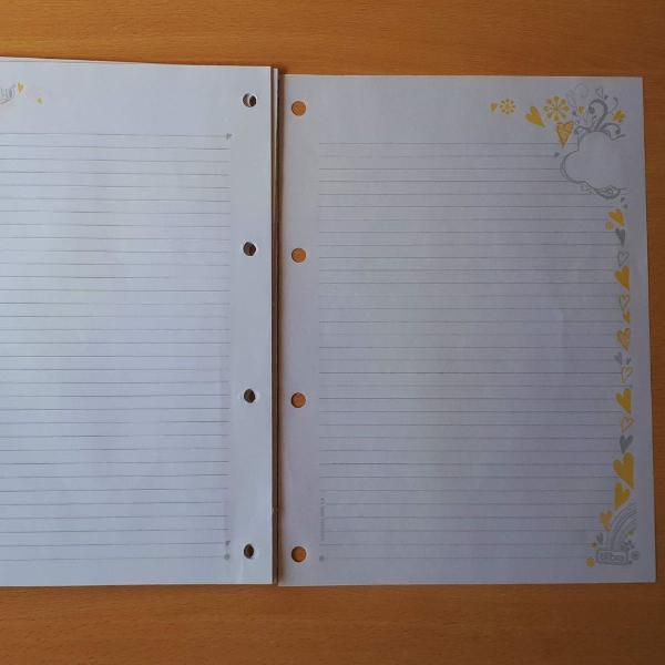 Material escolar - bloco folha de fichário capricho
