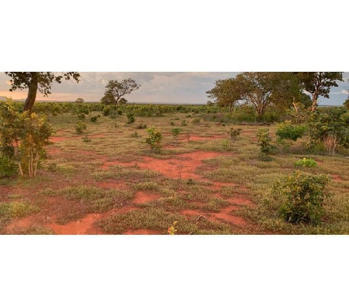 Fazenda 200 alq. pastoslavoura