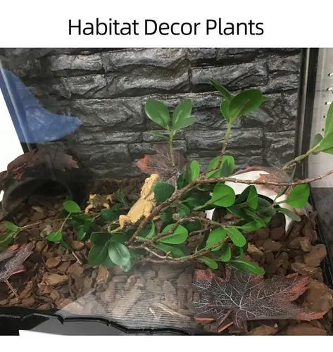 Habitat decor plantas terrário de plástico planta deixa