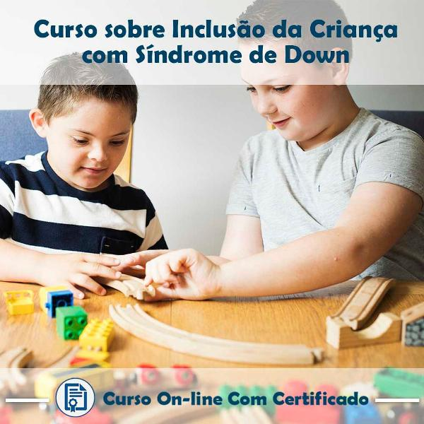 Curso online em videoaula sobre inclusão da criança com