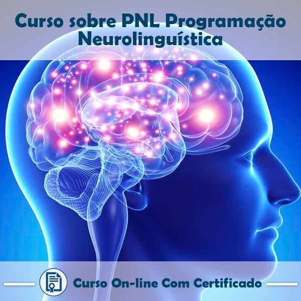 Curso online em videoaula sobre pnl - programação