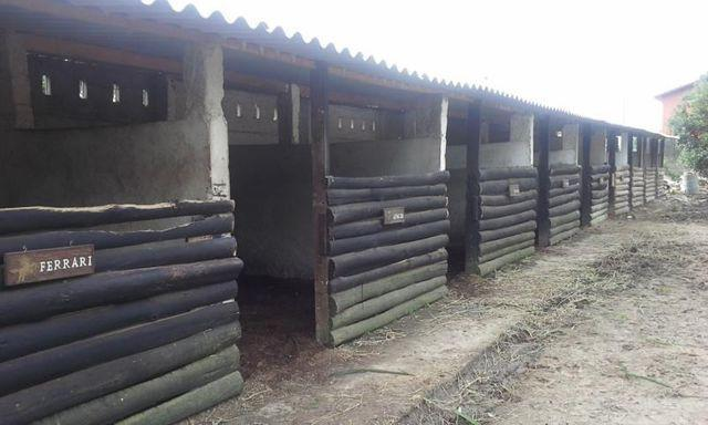 Aluguel de cocheiras para cavalos em blumenau barato