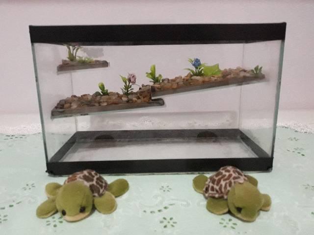 Aquaterrario tartaruga tigre d'água