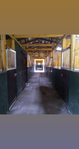 Centro de treinamento e hospedaria para cavalos